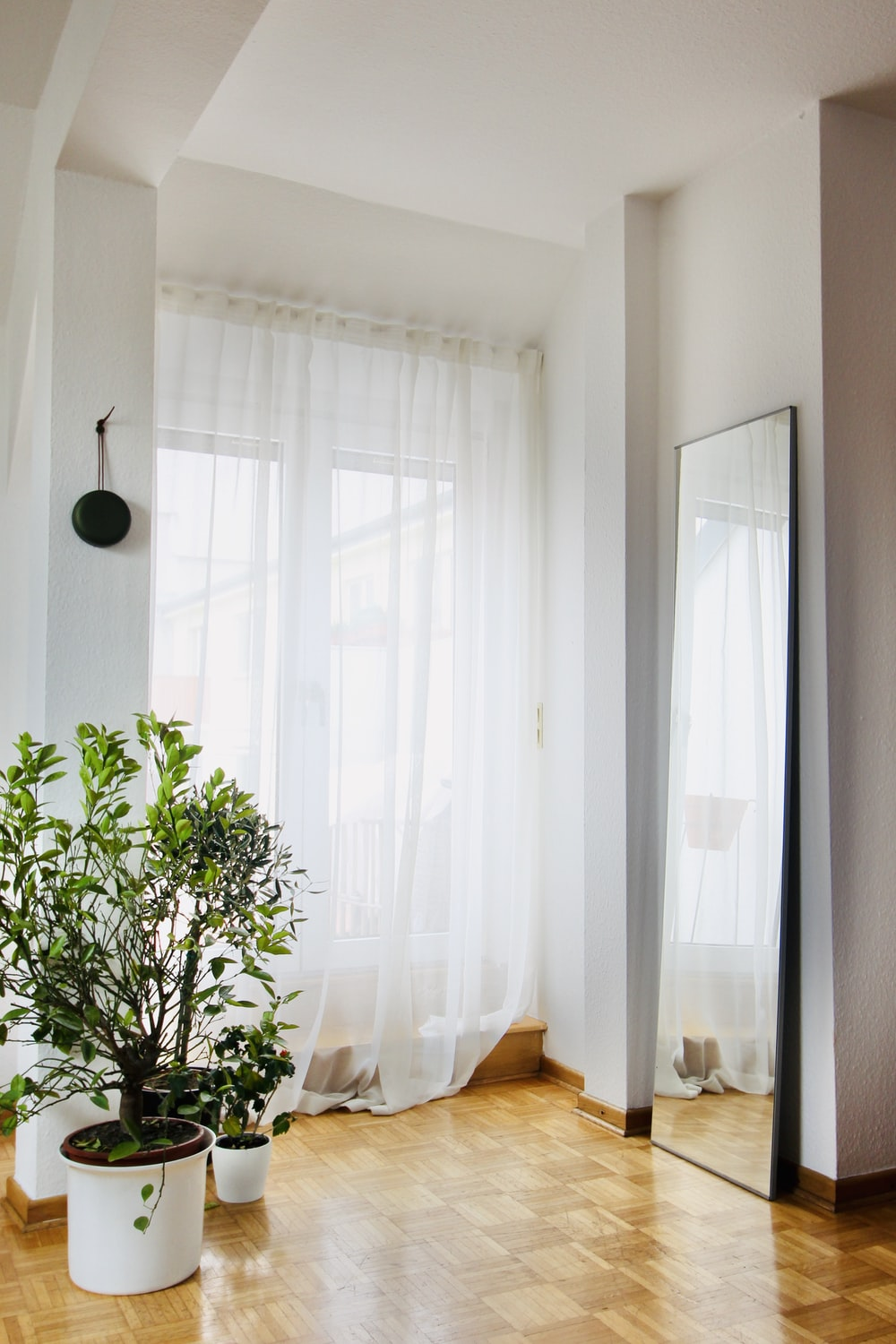 green potted plant near white window curtain