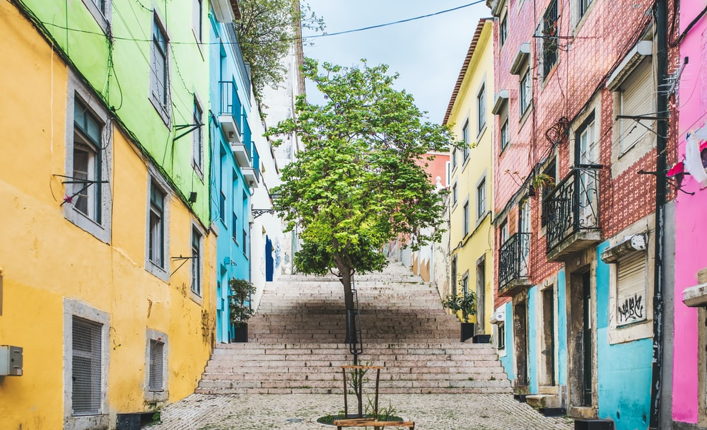green trees in between of yellow concrete buildings during daytime
