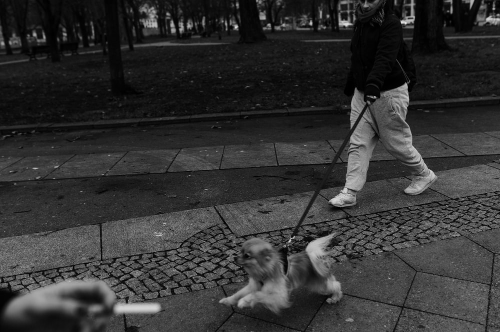 grayscale photo of man walking with dog on street