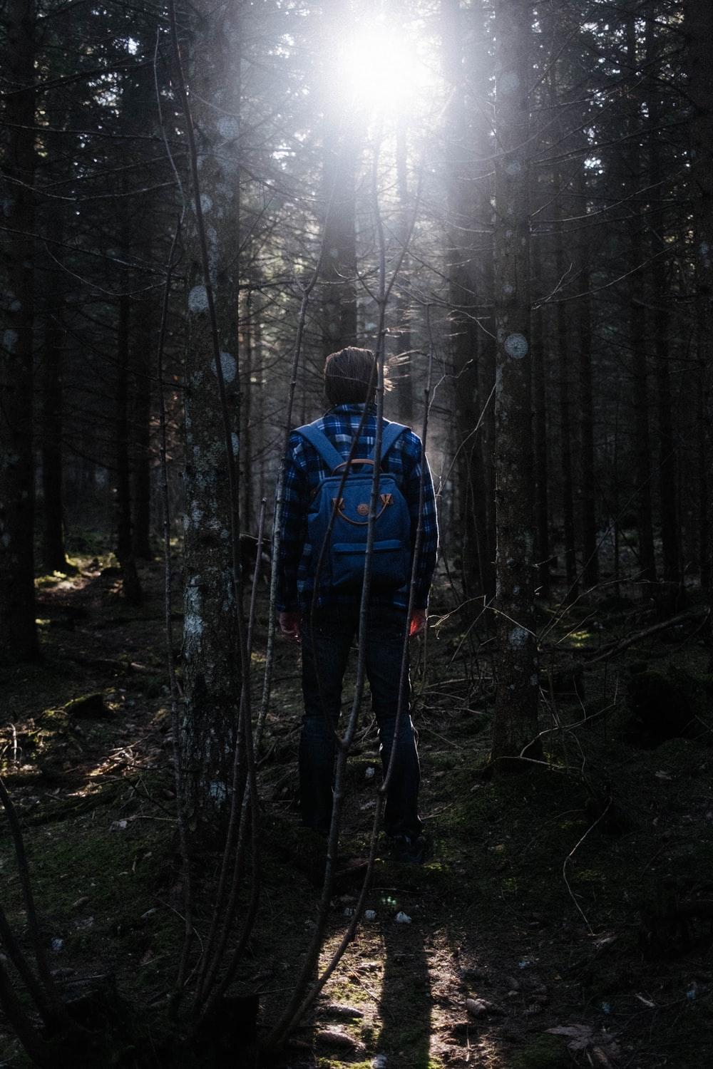 man in blue jacket standing in the woods