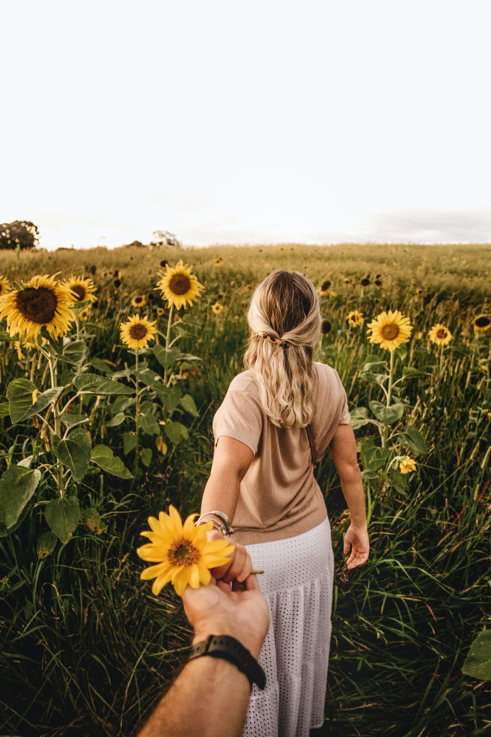woman in brown shirt standing on sunflower field during daytime