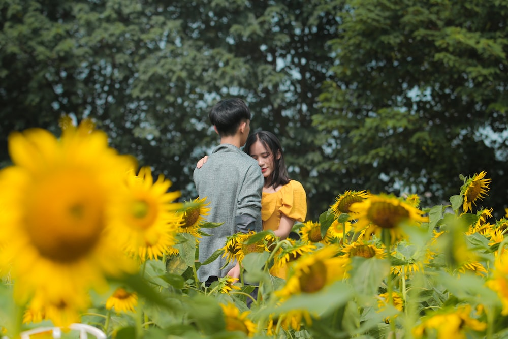 man and woman kissing on sunflower field during daytime