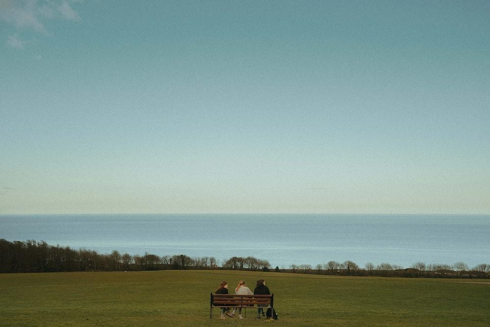 brown wooden bench on green grass field under blue sky during daytime