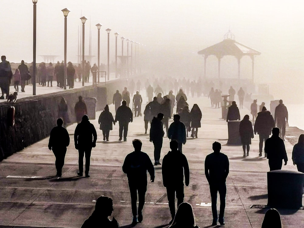 silhouette of people walking on gray concrete pavement during daytime