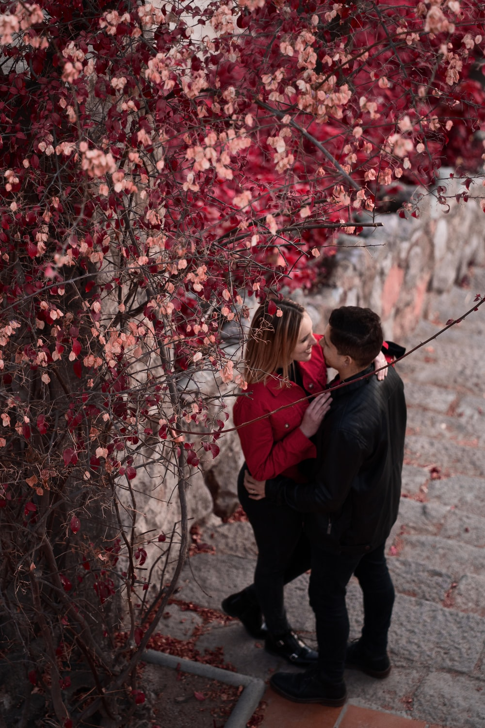 man and woman standing under cherry blossom tree during daytime