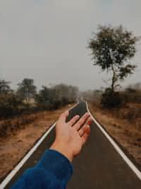Walking Alone street stories