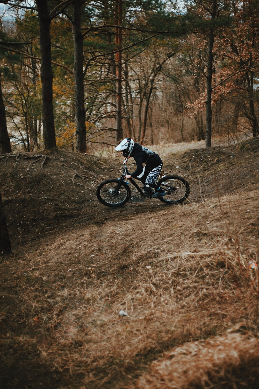 man in black and white jacket riding on black mountain bike in the woods during daytime