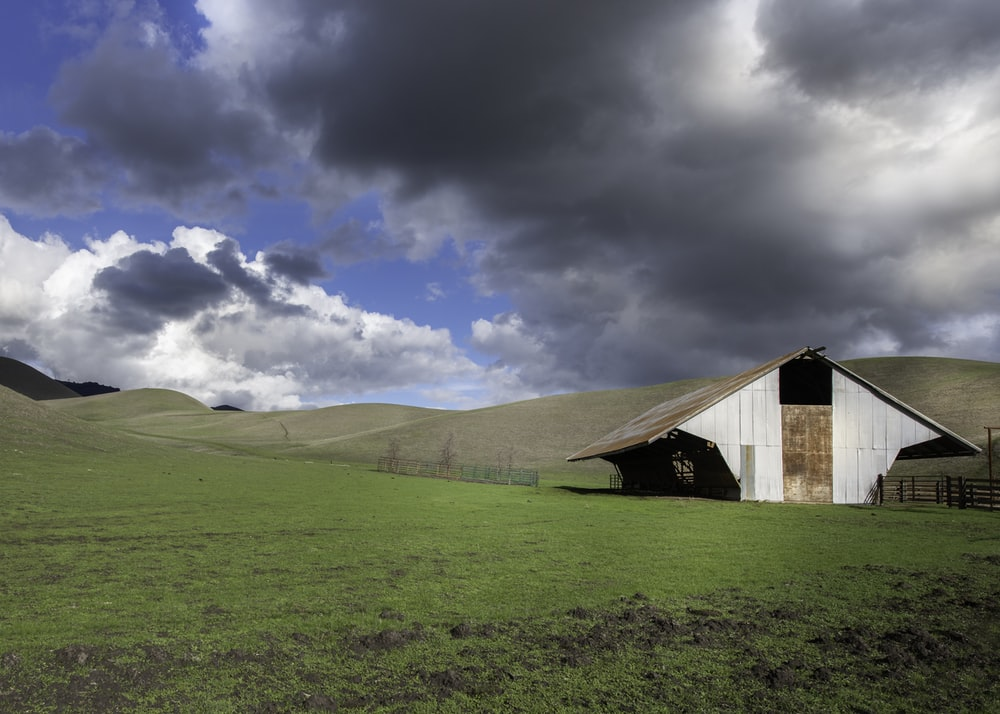 brown wooden barn on green grass field under blue sky and white clouds during daytime