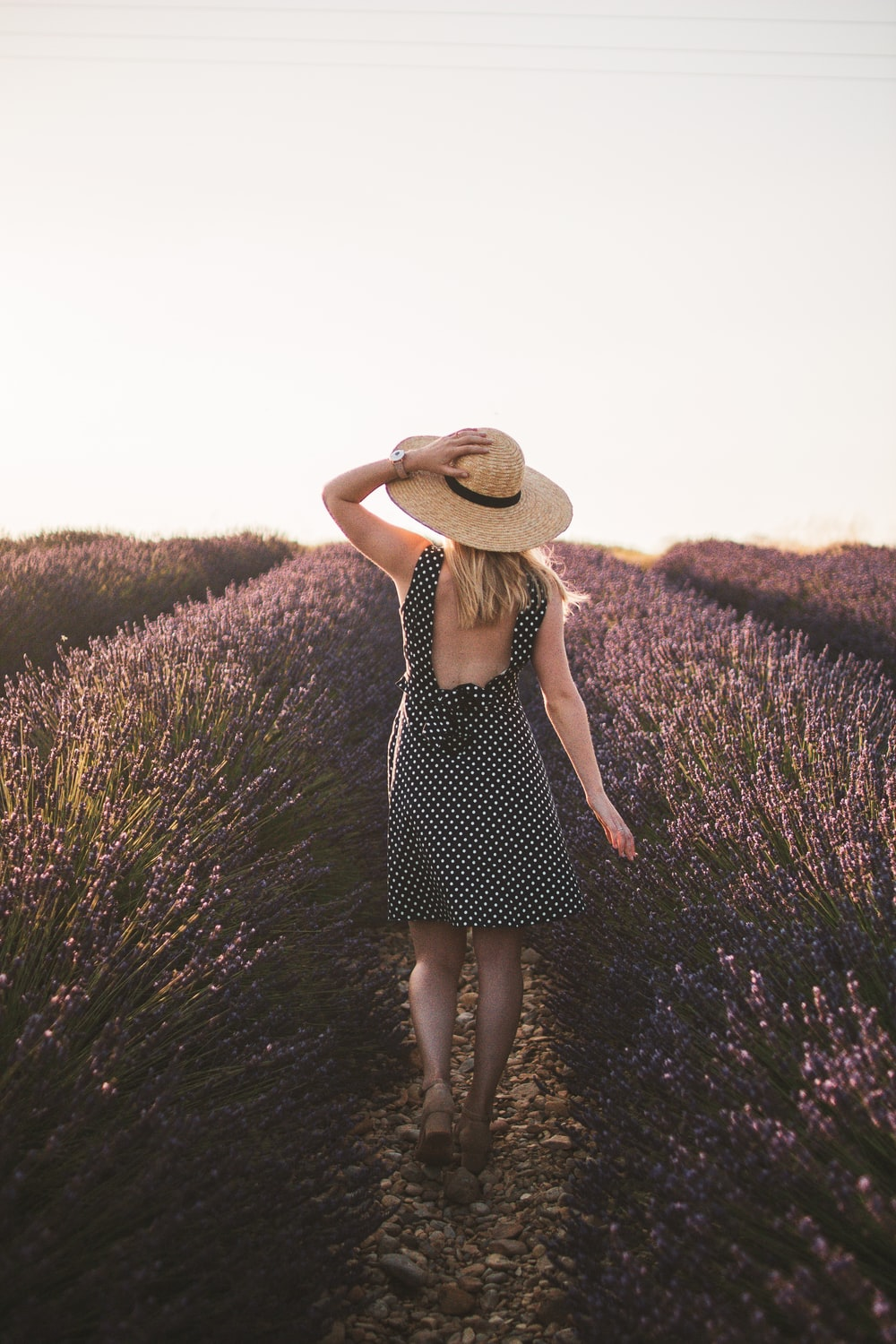 woman in black and white polka dot dress standing on purple flower field during daytime