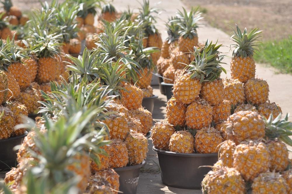 orange and green pineapple fruits in black plastic bucket
