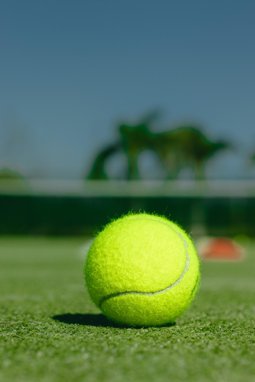 Stream 2021 Wimbledon Championships live on BBC iPlayer