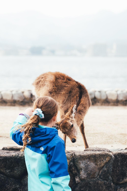 girl in blue jacket and blue denim jeans sitting on brown sand beside brown deer during