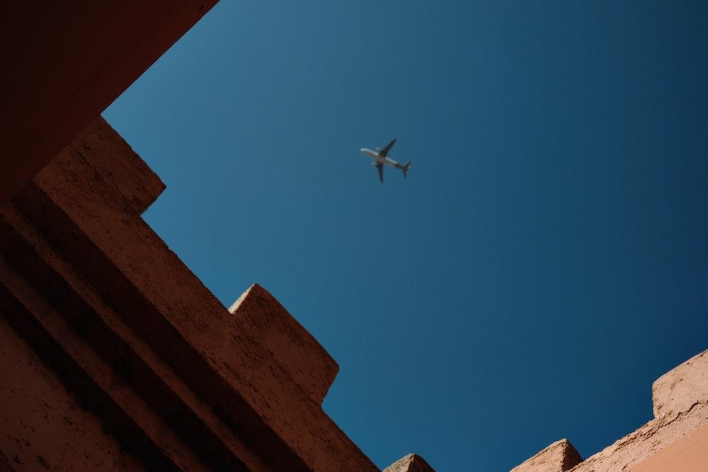 white bird flying on blue sky during daytime