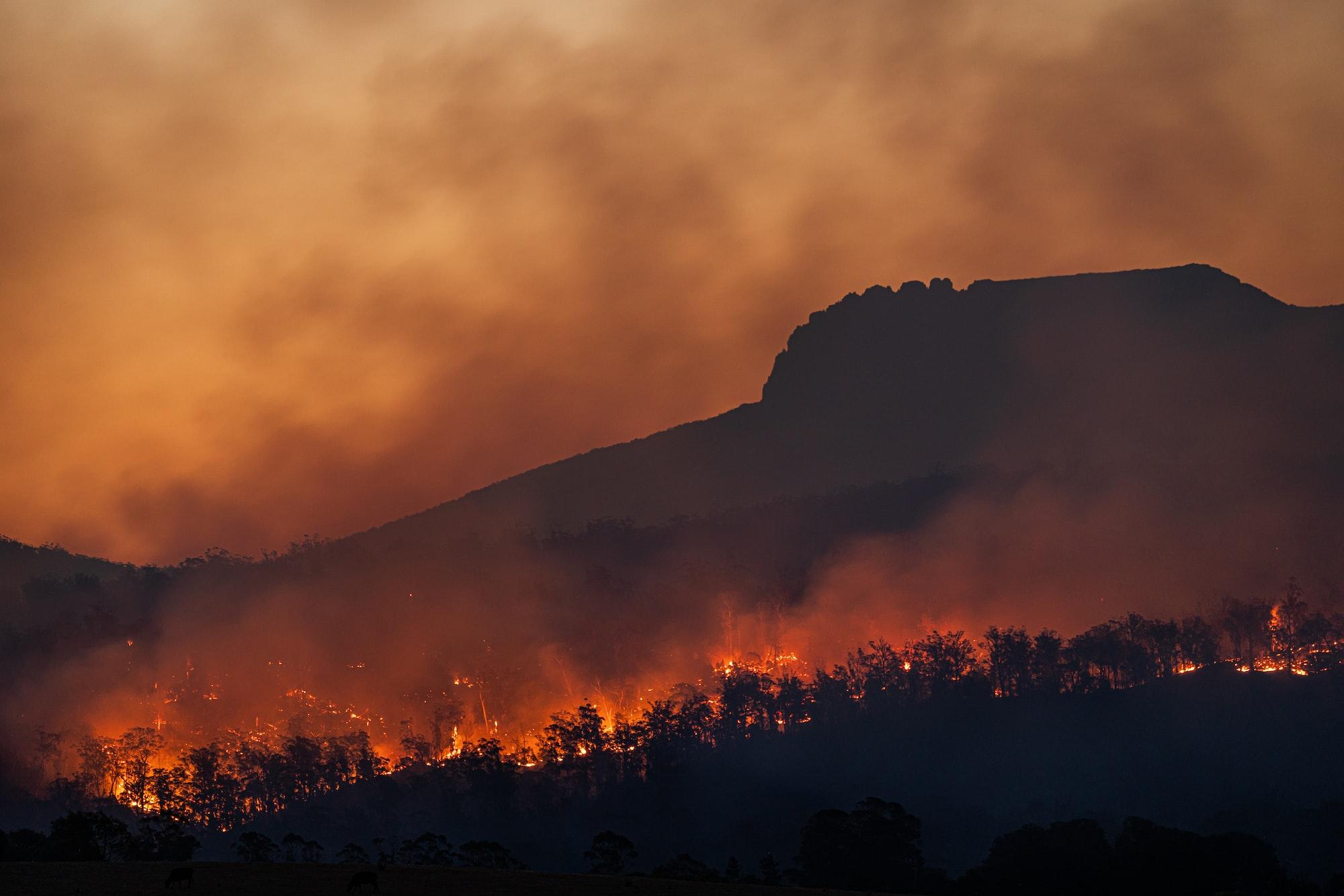 Bushfires below Stacks Bluff, Tasmania, Australia