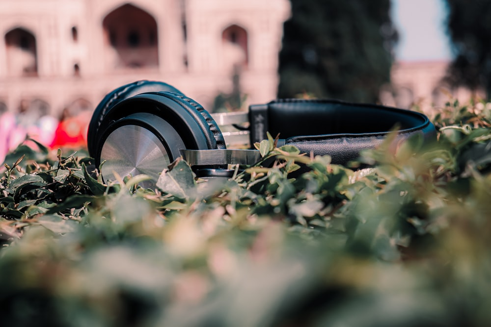 black and silver dslr camera on green grass