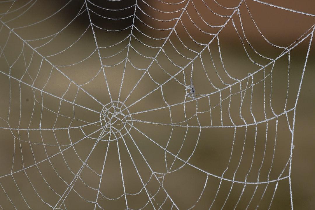 <i>Meine Web-Link</i><i>Empfehlungen</i>