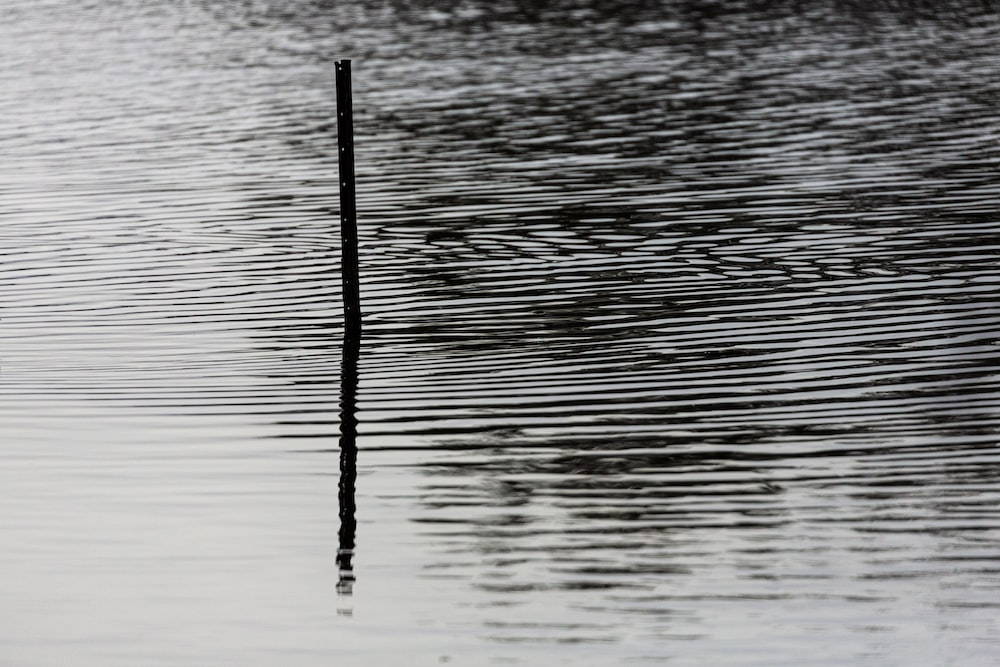black stick on body of water during daytime