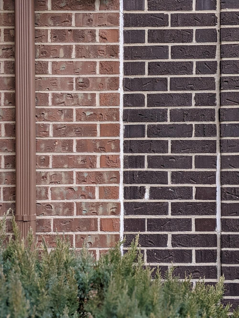 green grass beside brown brick wall