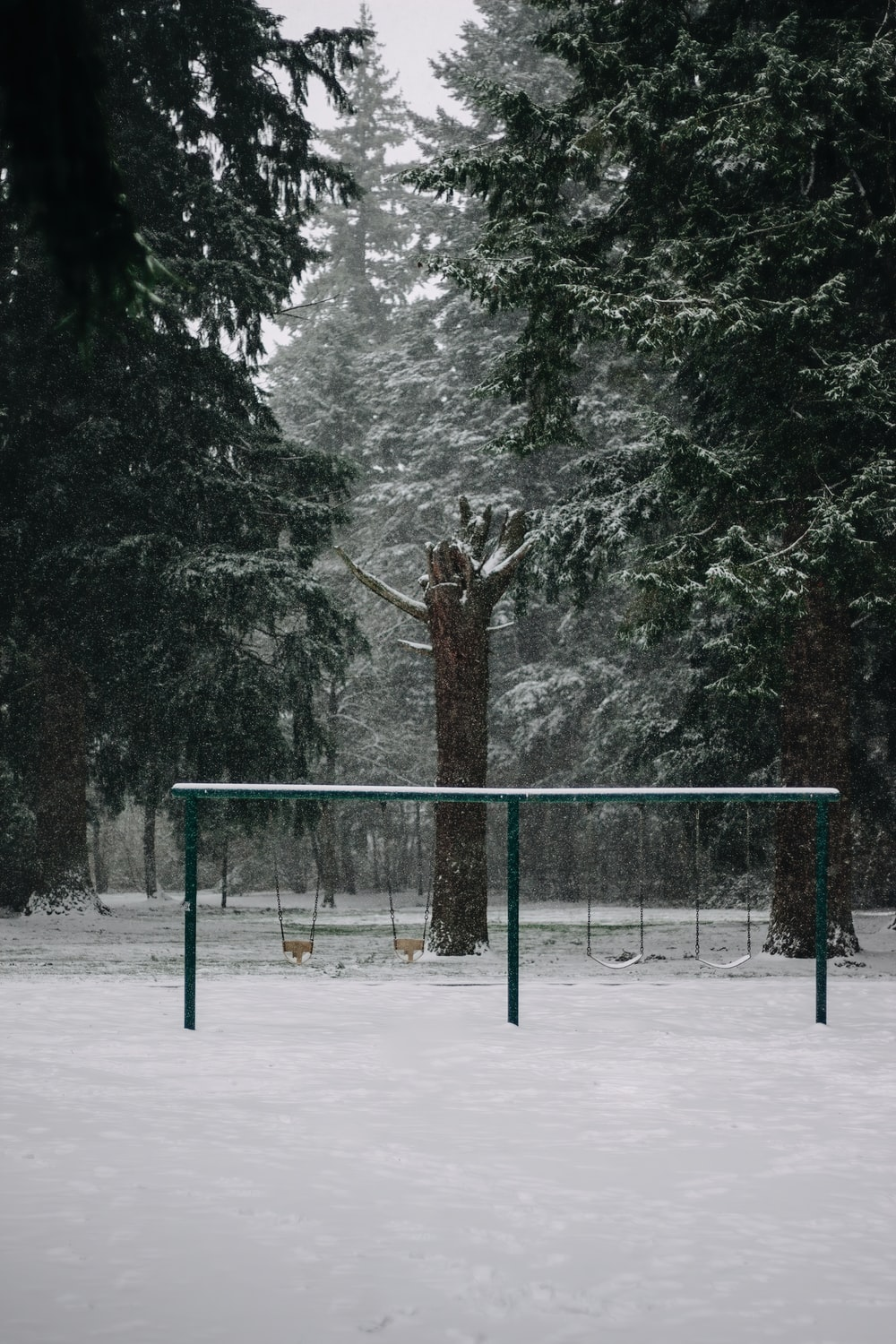 black metal fence near trees covered with snow