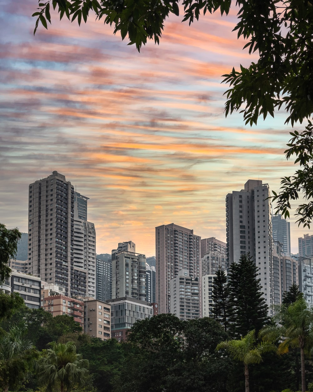 high rise buildings near green trees under cloudy sky during daytime