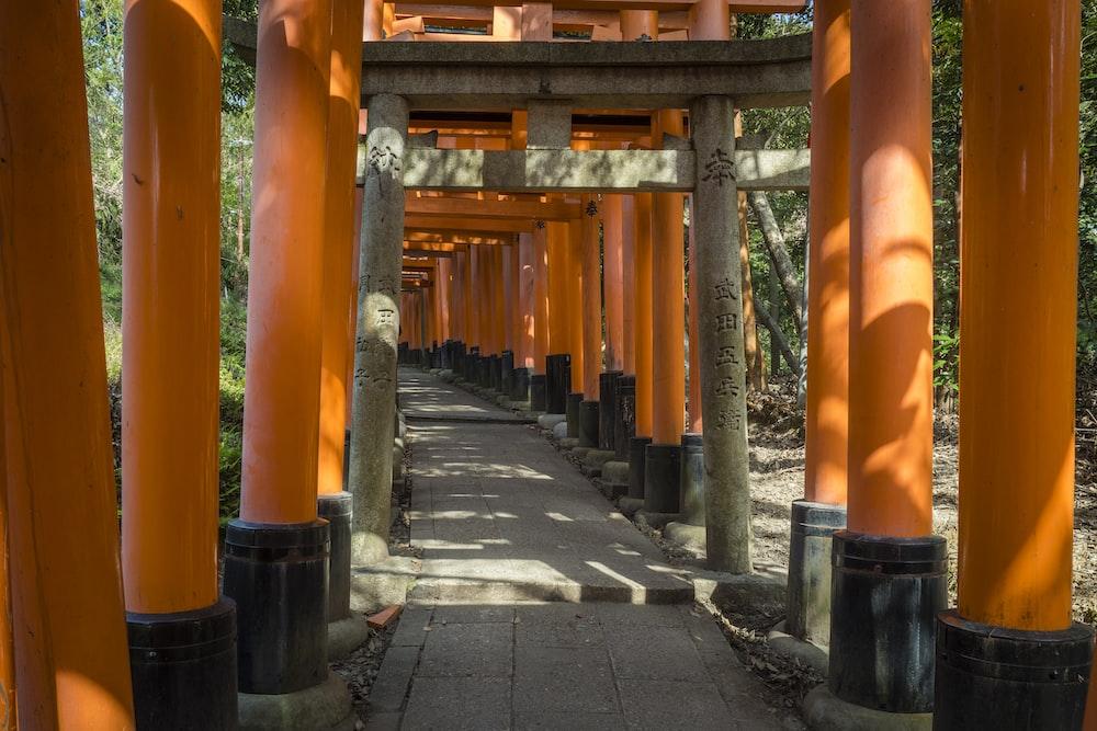 orange and black wooden bridge