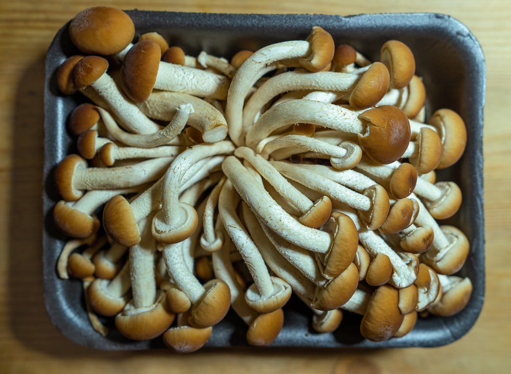 brown and white nuts on black tray
