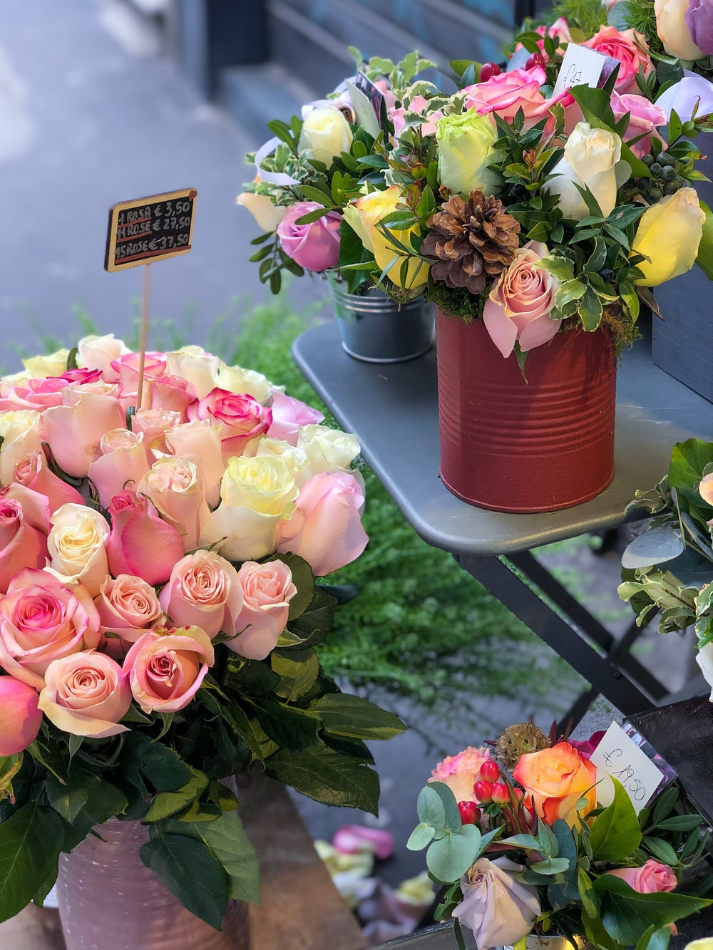 pink roses in pink plastic pot