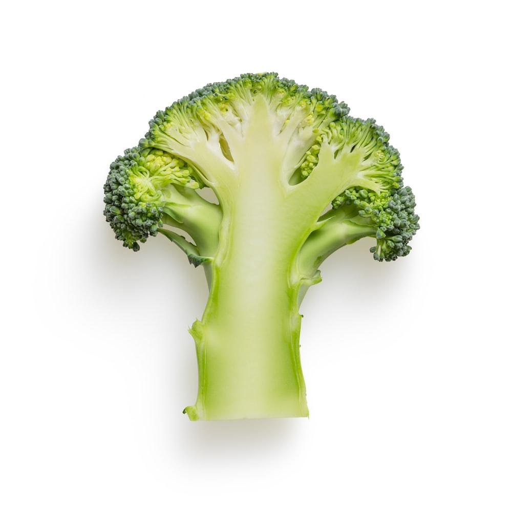 green broccoli on white background