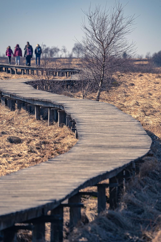 people walking on wooden bridge during daytime
