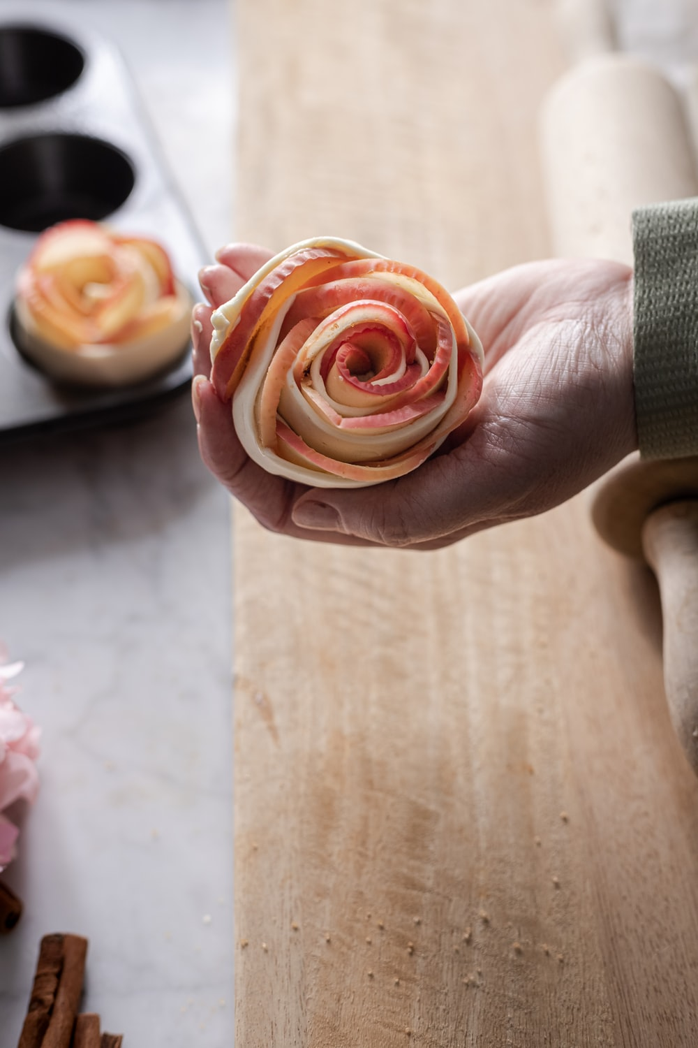 person holding pink rose flower