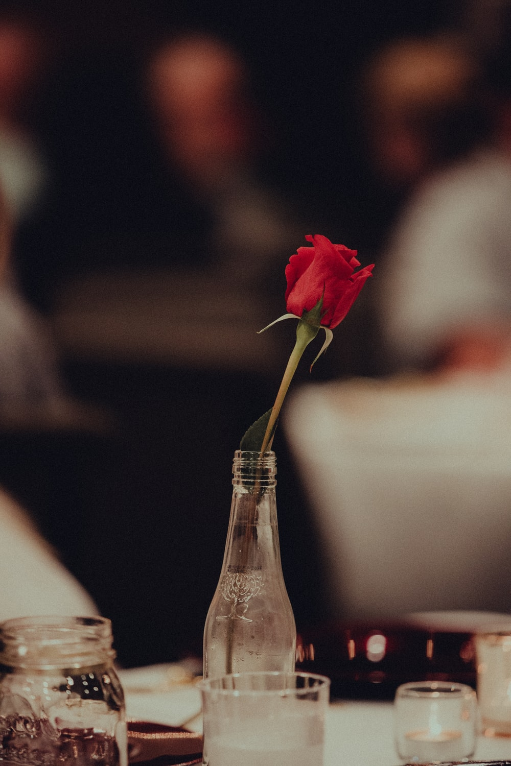red rose in clear glass bottle