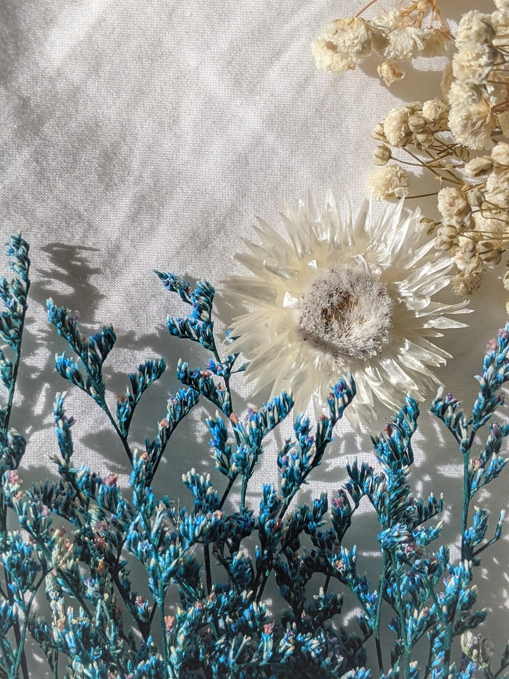 white and brown flowers on gray textile