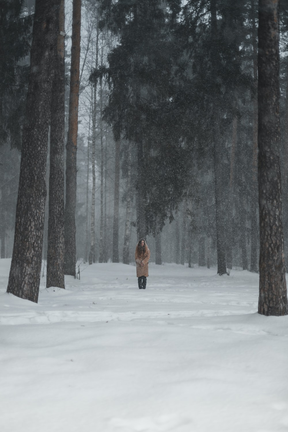 person in brown jacket walking on snow covered ground
