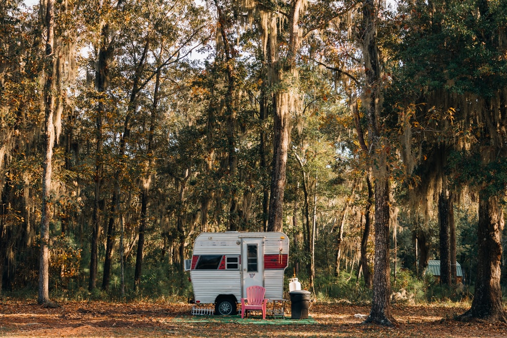 white van in forest during daytime