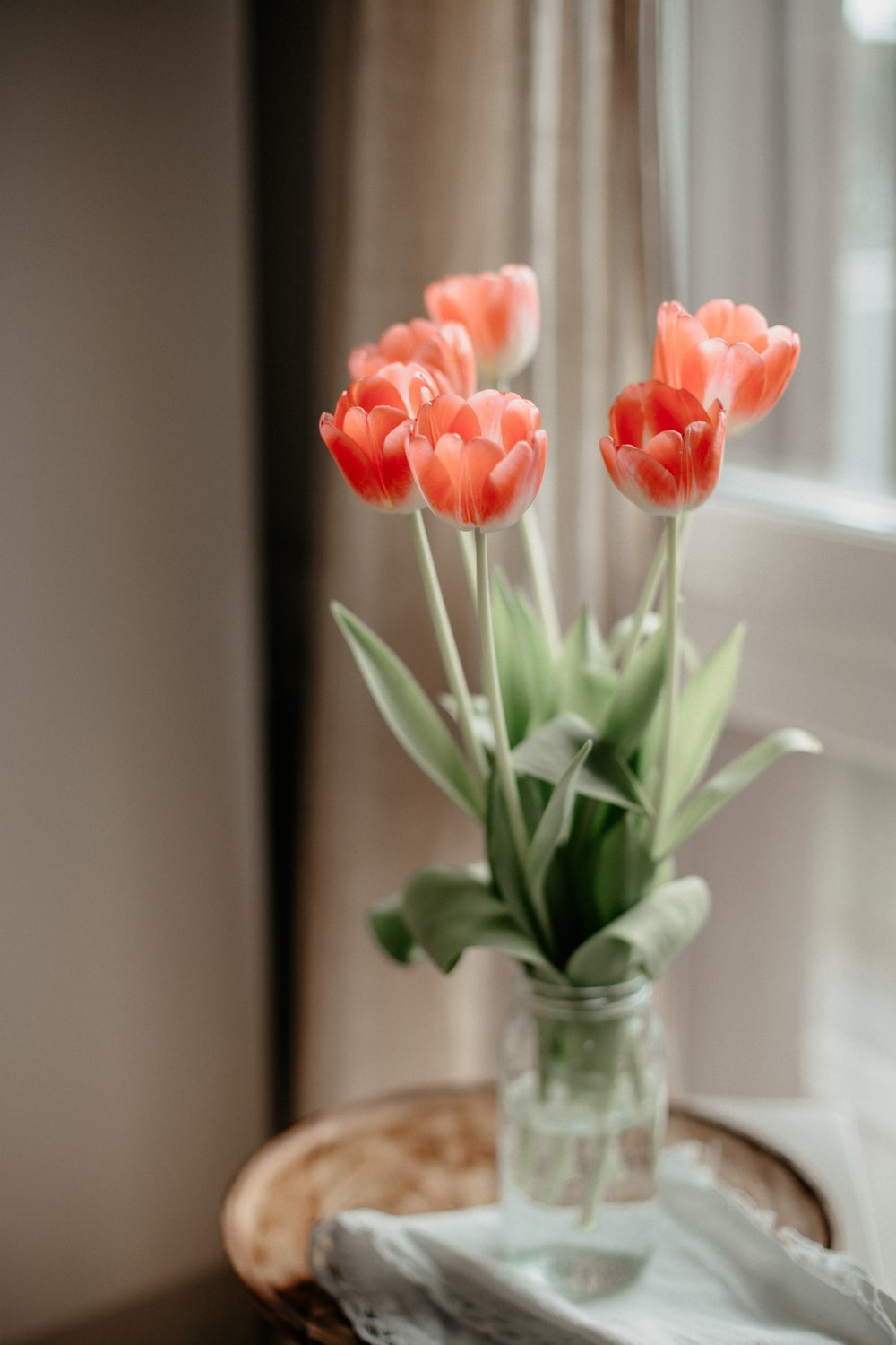 pink tulips in clear glass vase