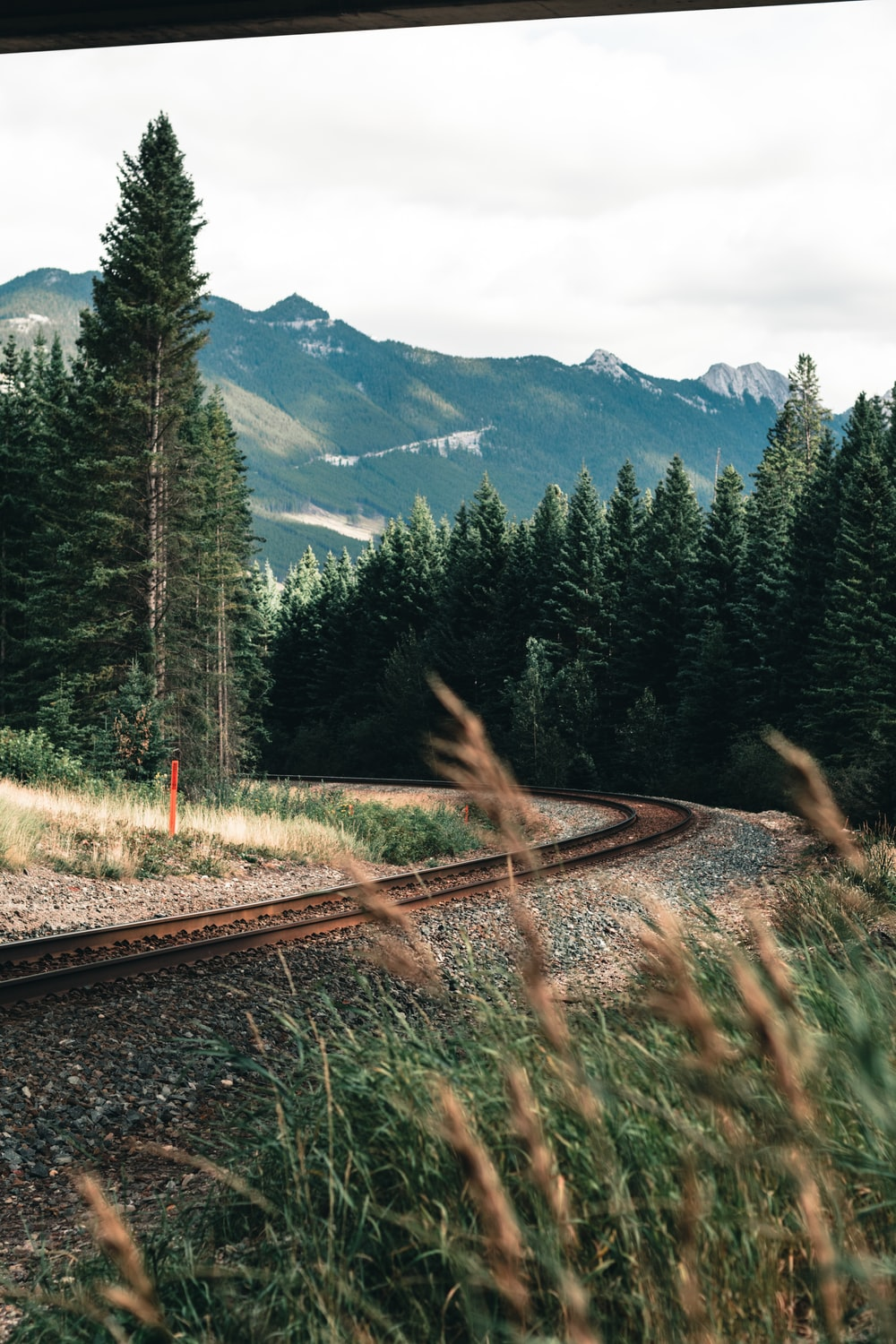 train rail near green pine trees and mountains during daytime
