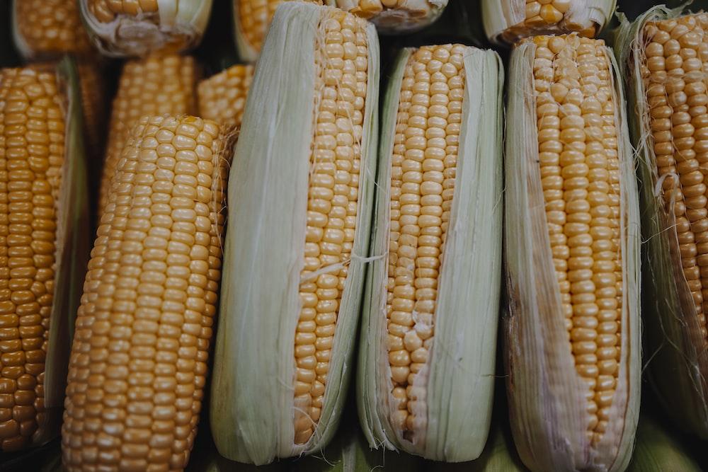 yellow corn on black plastic container