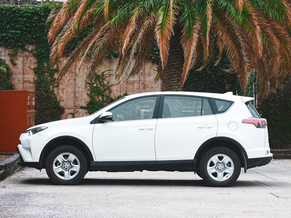 white suv parked near palm tree during daytime