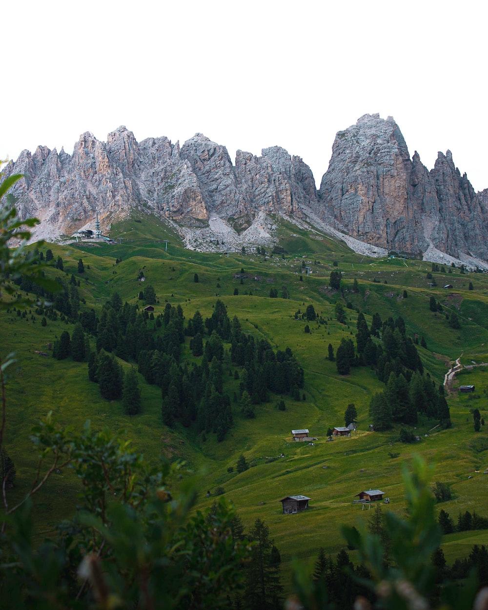 green grass field near brown rocky mountain during daytime