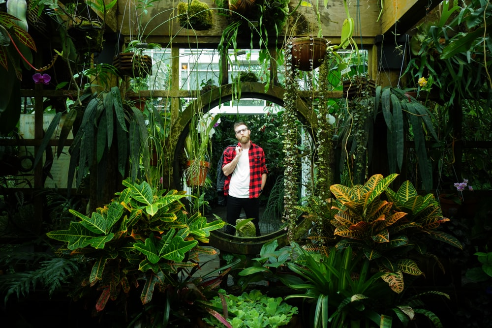 man in red and white long sleeve shirt standing beside green plants