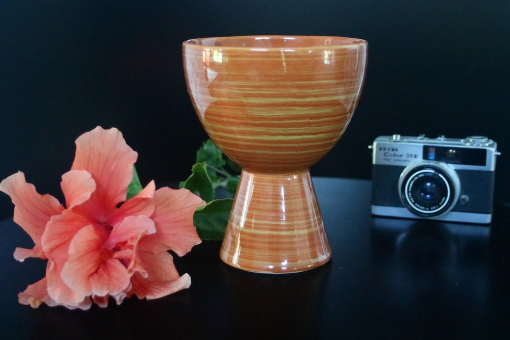 pink roses beside brown ceramic vase