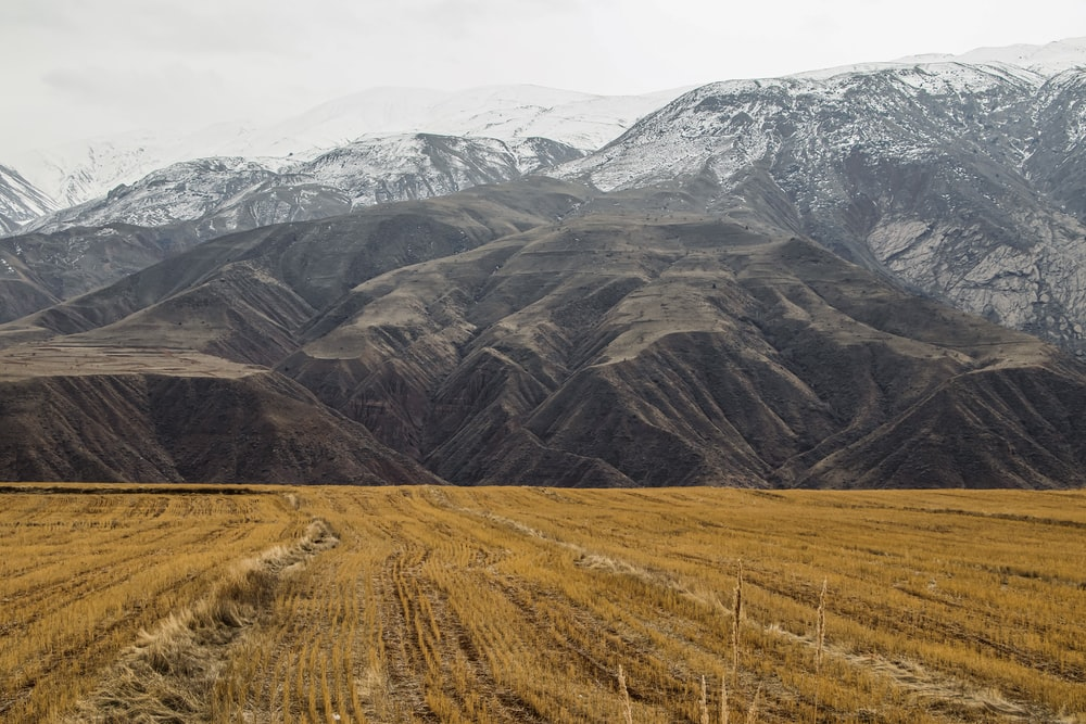 brown grass field near mountain under white sky during daytime