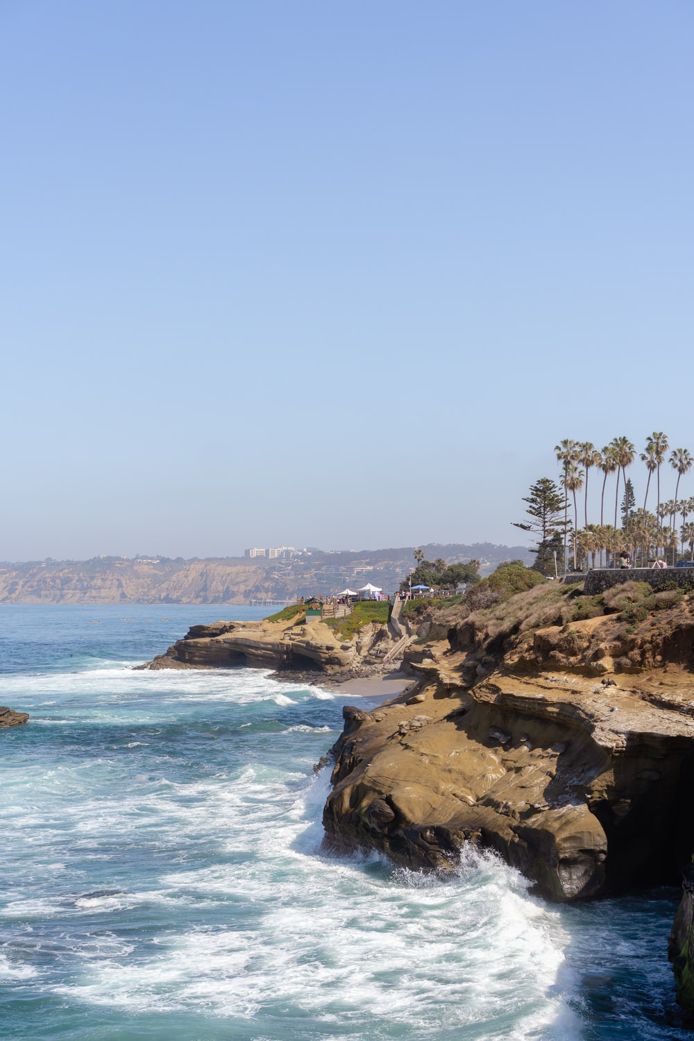 green palm trees on brown rocky shore during daytime
