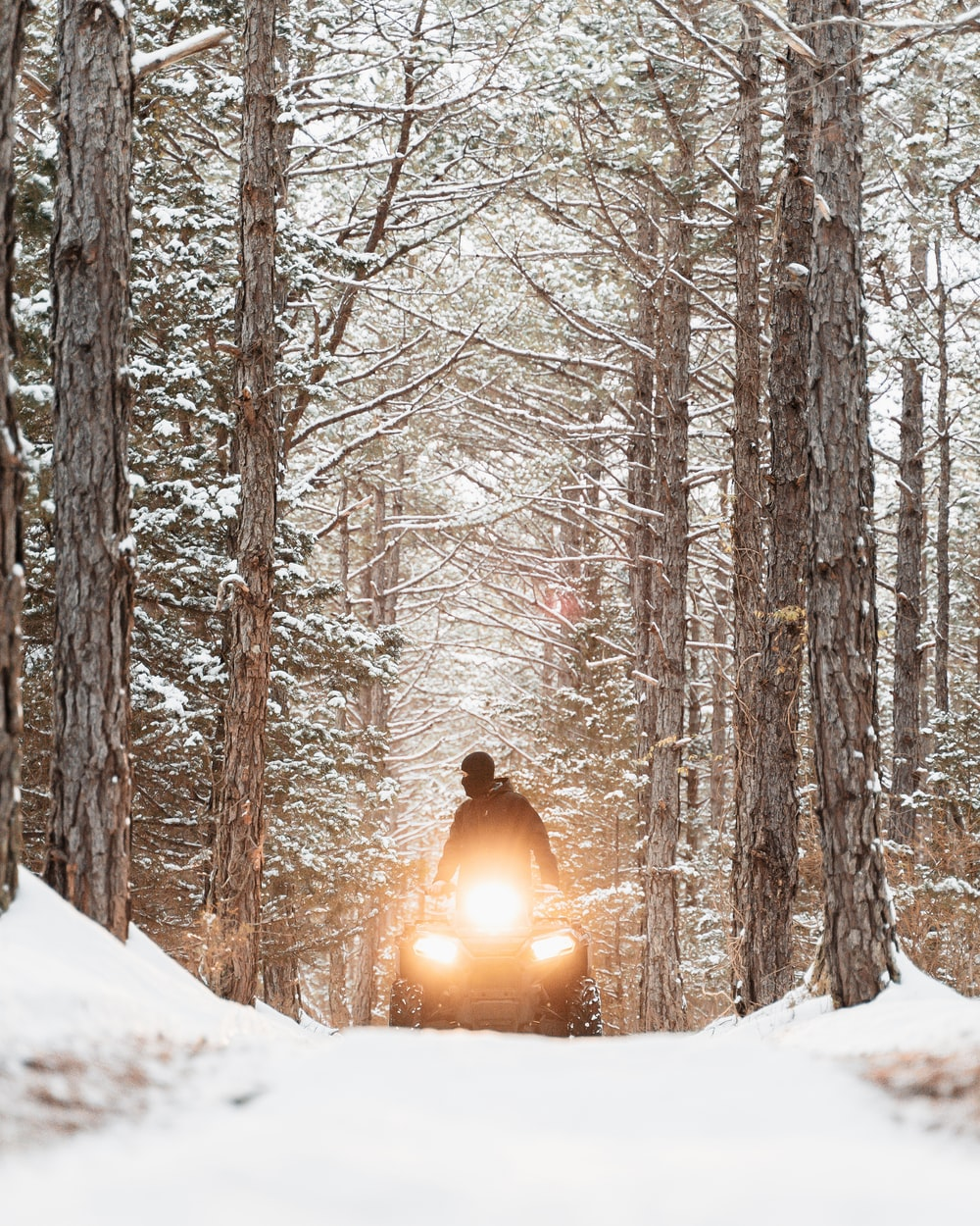person in black jacket standing on snow covered ground near bare trees during daytime