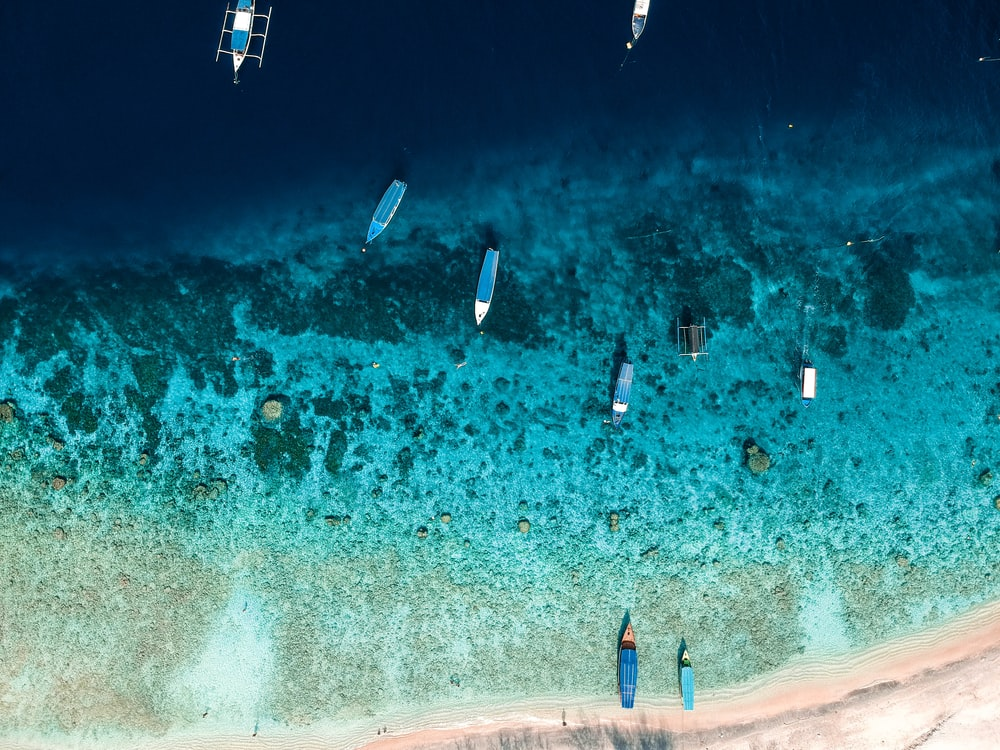 aerial view of people surfing on sea during daytime