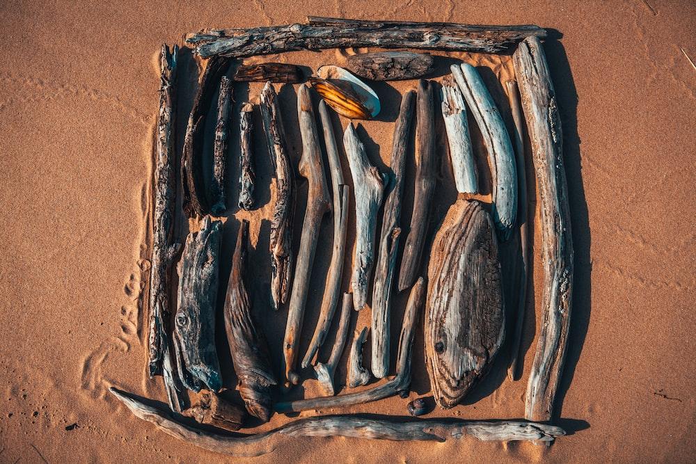 brown and black wood on brown sand