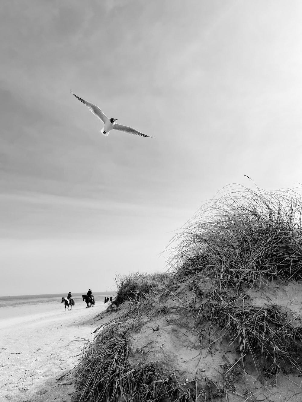grayscale photo of people walking on beach