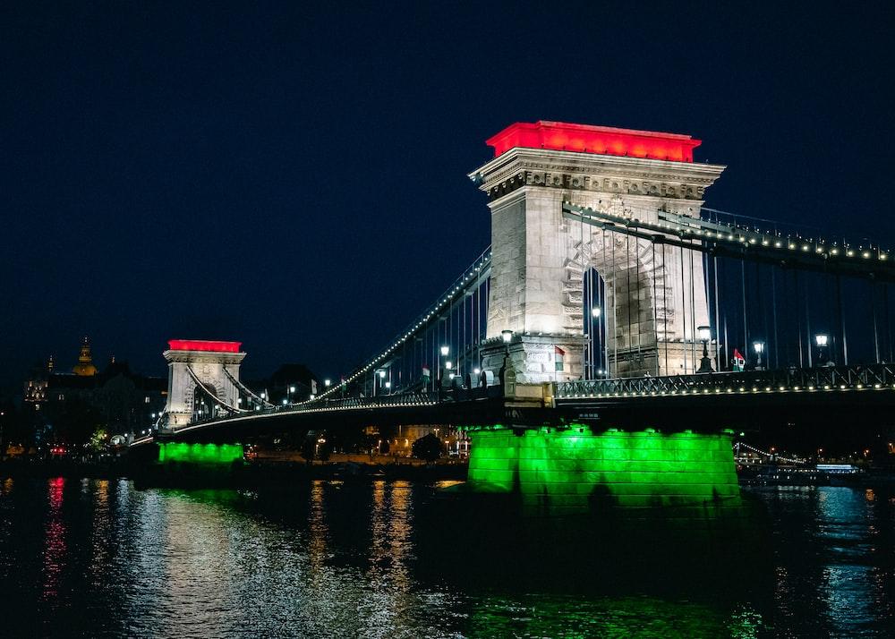 white concrete bridge during night time