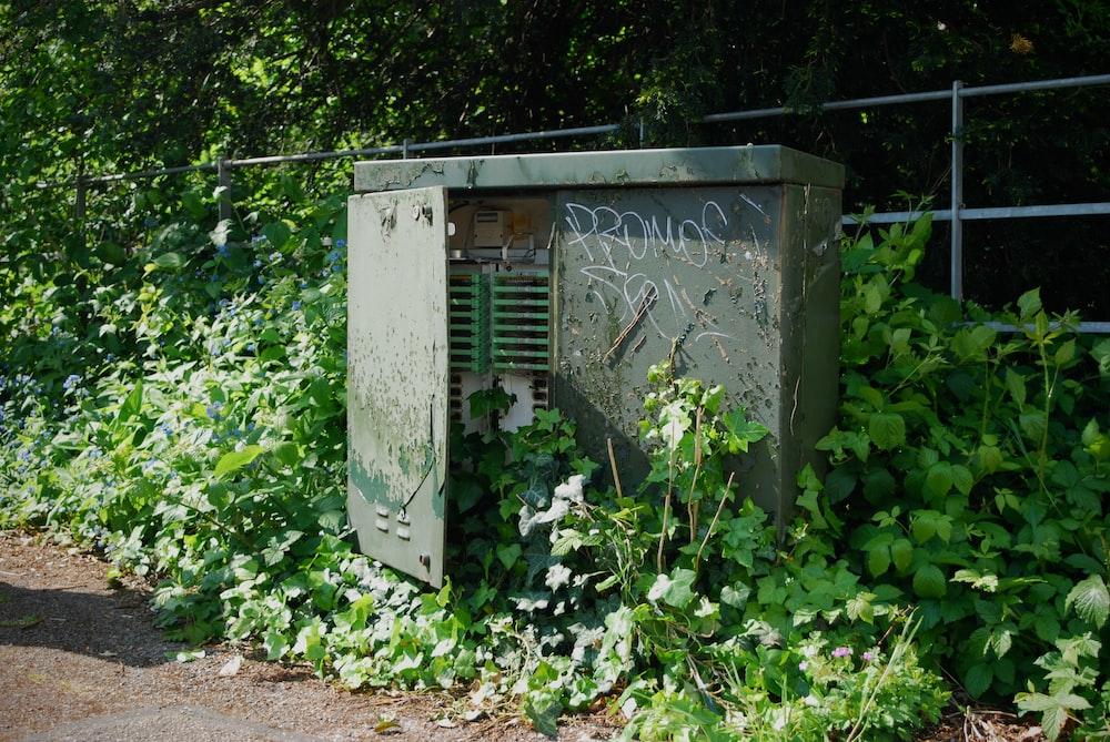 gray metal door with green plants