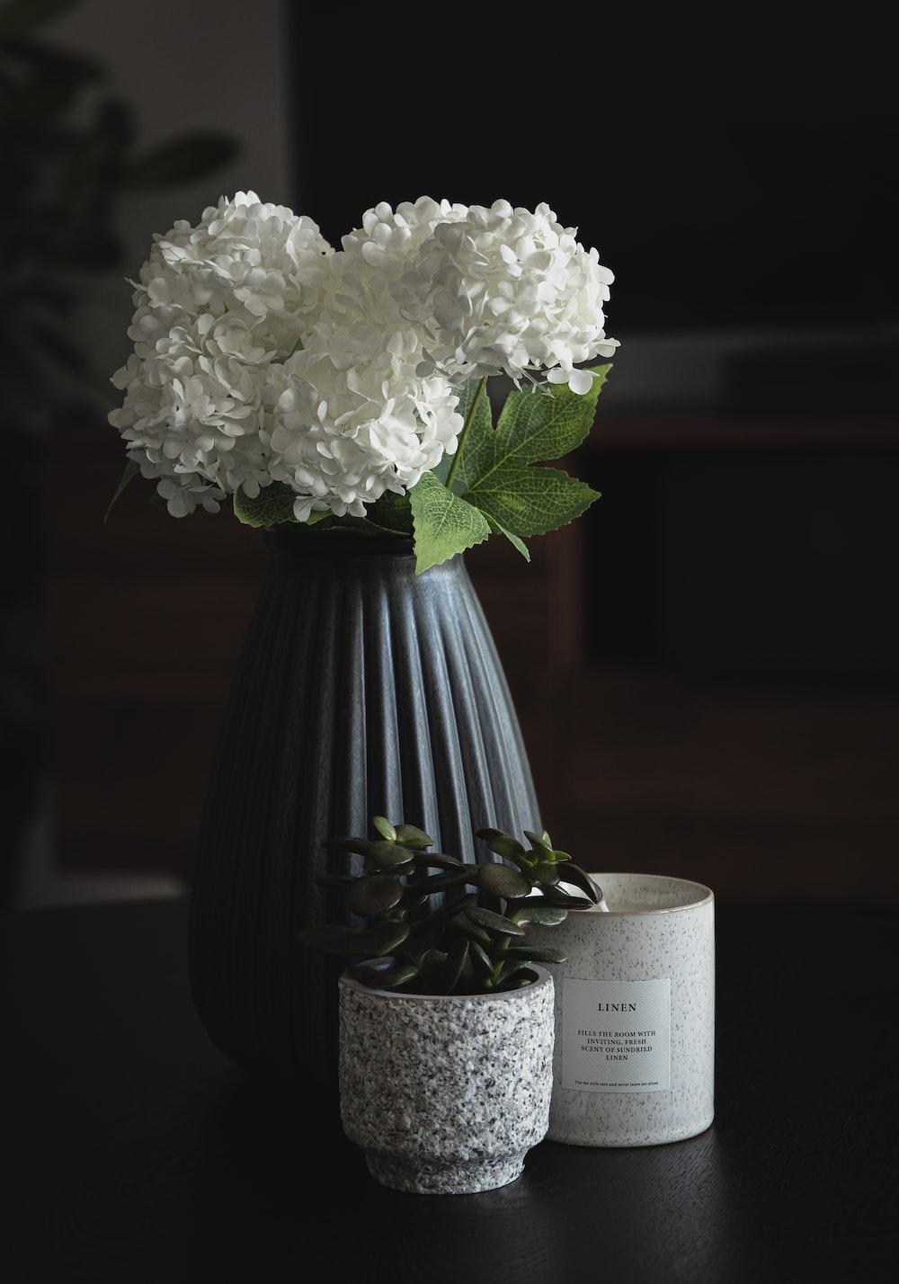 white flower in blue vase
